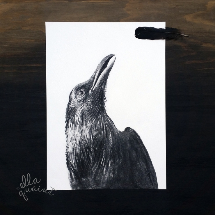 crow-2016-logo-flat